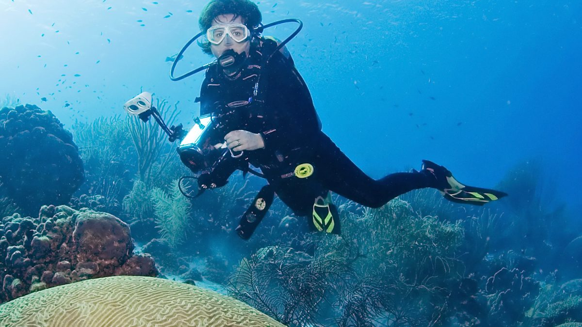 Best Tips And Ideas For Underwater Photography